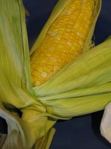 corn on the cob recipe momspark.net