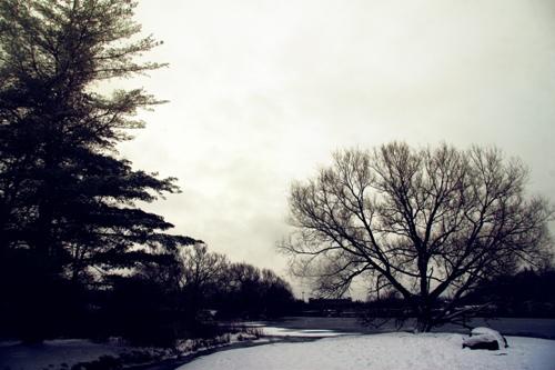 Winter in the Park Photo momspark.net