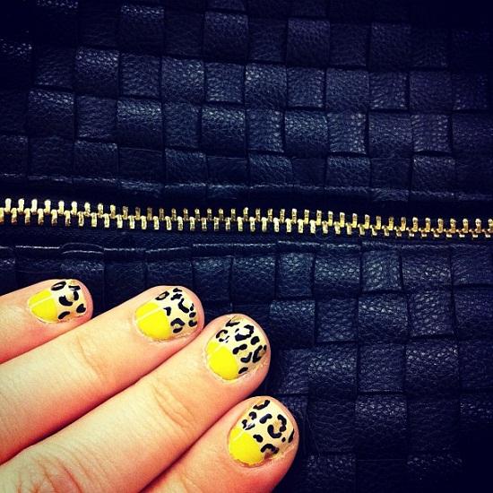 wild animal nails