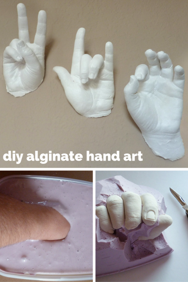 a real hands on craft alginate plaster of paris
