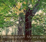 autumn quotes (1)