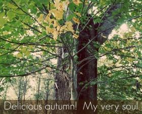 autumn quotes (1)