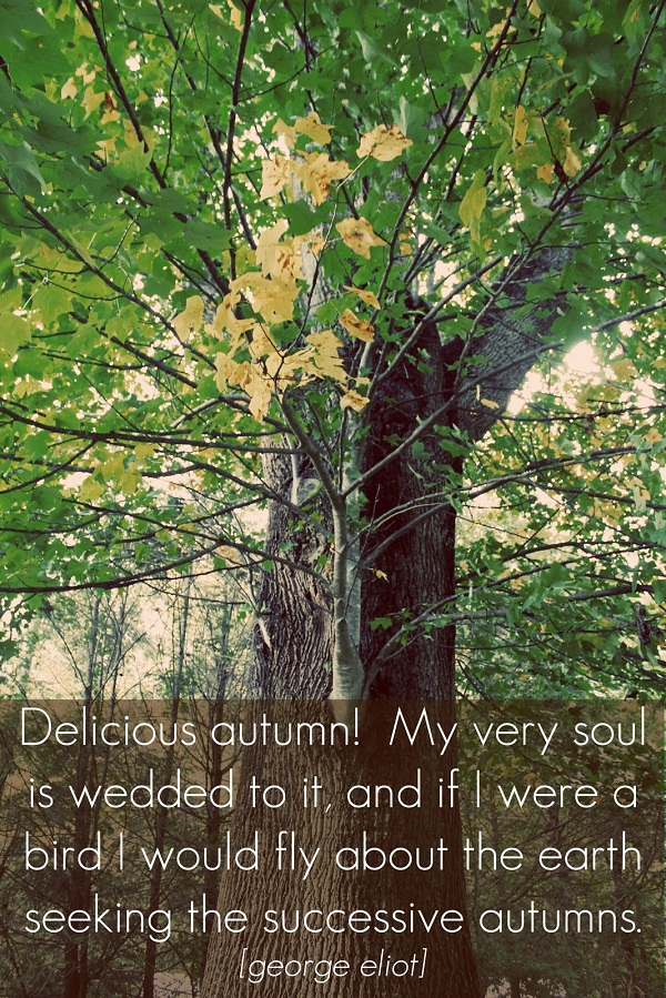 quotes about autumn fall