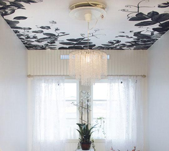 Color Up Interior Design and Decor