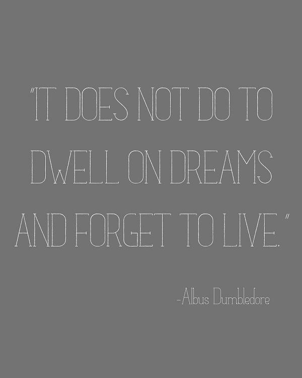 Albus Percival Wulfric Brian Dumbledore Quotes