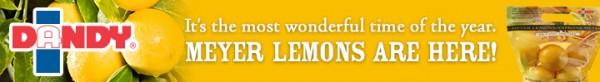 Dandy Meyer Lemons