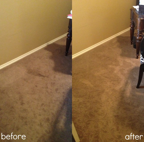 Photo Viper Carpet Extractor Images Floor Scrubber Home Design Ideas And Pictures Find