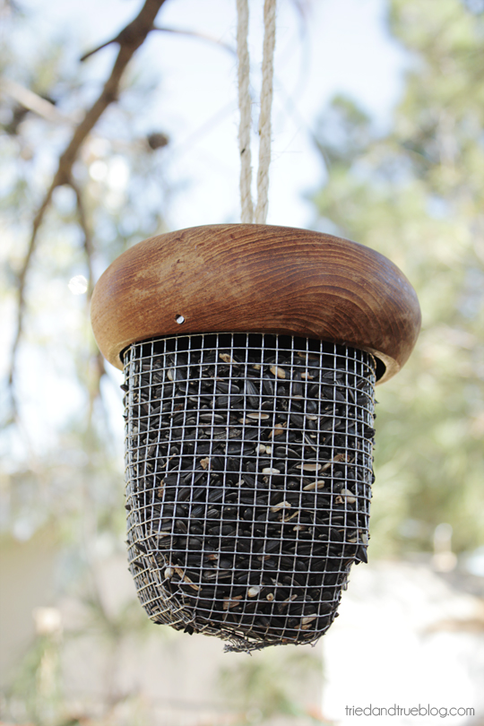 Acorn Bird Feeder DIY Craft