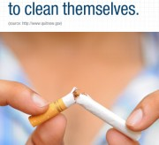 Blueprint to Quit Smoking