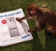 Monkey Samsung
