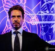 Tony Stark Wax Museum
