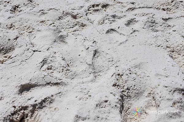 White Sands copy