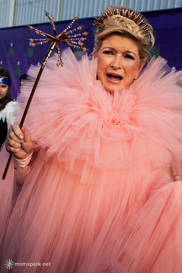 Martha Stewart Costume