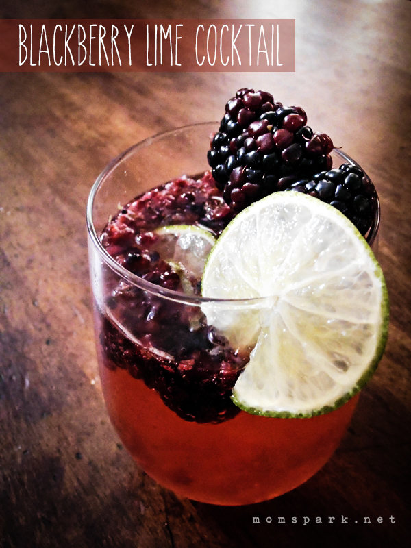Blackberry Lime Cocktail Recipe