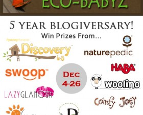 huge blog giveaway