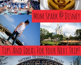 mom-spark-at-disney