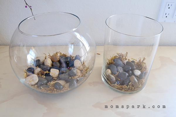 Simple DIY Terrarium Tutorial