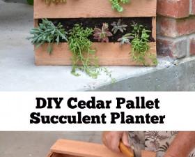 header-cedar-succulent-pallet-planter-momspark