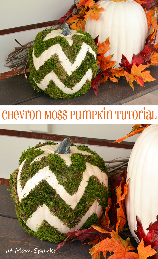 Chevron Moss Pumpkin Tutorial