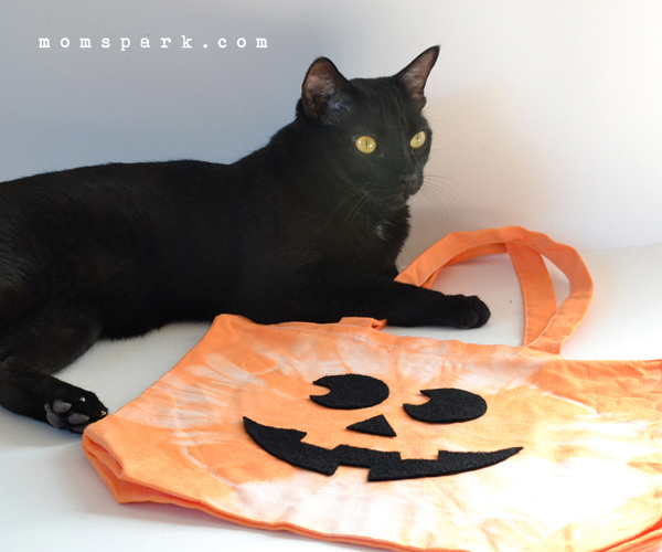 Repurpose old totes into fun trick or treat bags!