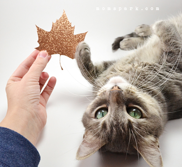 Be thankful this Autumn, with glitter!