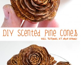 Make pretty decorative pine cones in your favorite scent!
