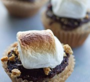 We Want S'Mores Cupcakes