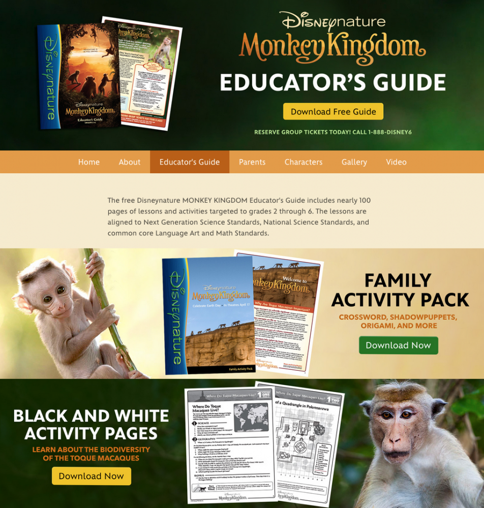 MONKEY KINGDOM Activity Printables