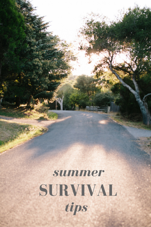 Summer Survival Tips for Families