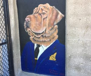 Dogparkart