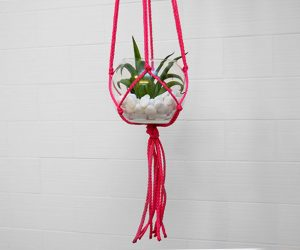 Macrame is so easy to do! Try it out with this simple succulent hanger!