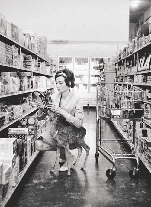 Audrey Hepburn Photo Black and White