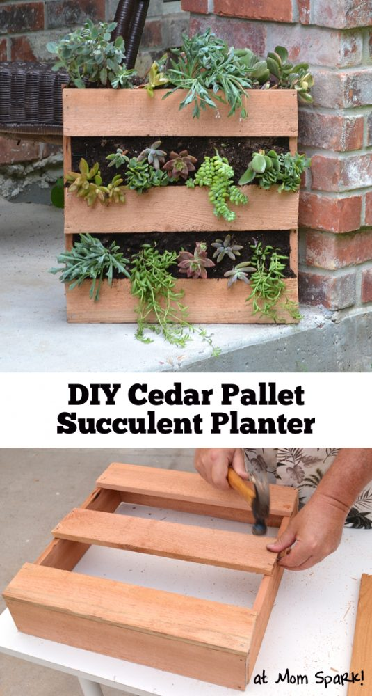 Diy cedar pallet succulent planter mom spark mom blogger for Planters made out of pallets