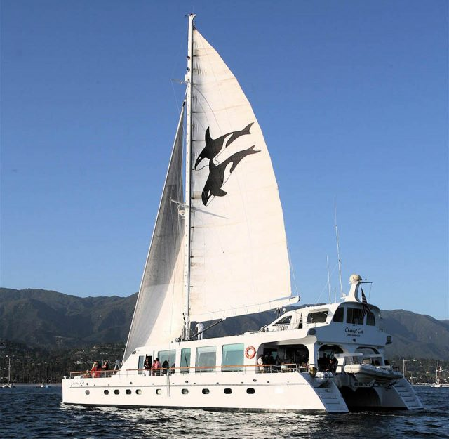 Channel Cat Dinner Cruise - What to Do on Your First Trip to Santa Barbara