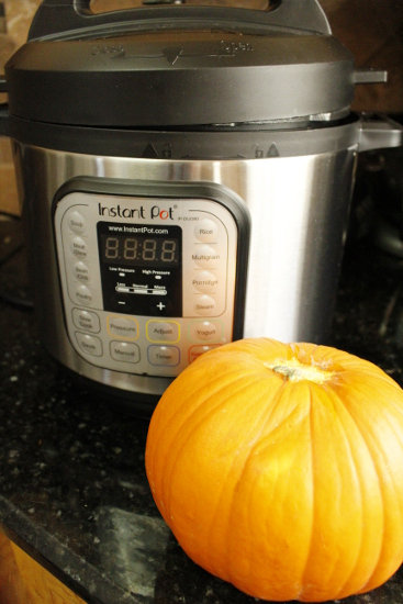 Instant Pot Pumpkin Puree Fall is the best time to bust out your instant pot. There are so many fall-inspired instant pot recipes for cozy, crisp autumn days.